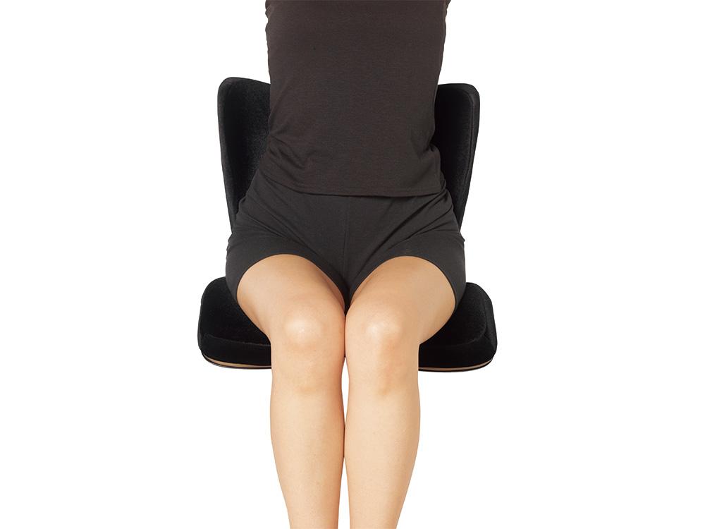 Style PREMIUM DXはリッチな座り心地と姿勢のサポートの両立を実現しました。