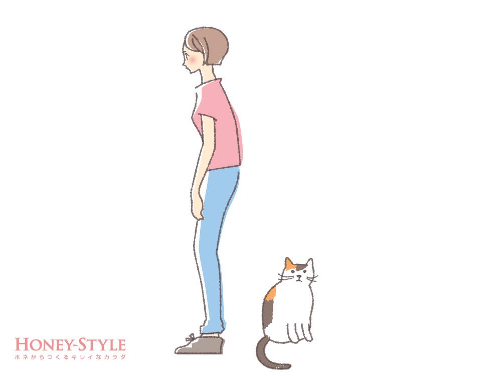 腰猫背タイプ