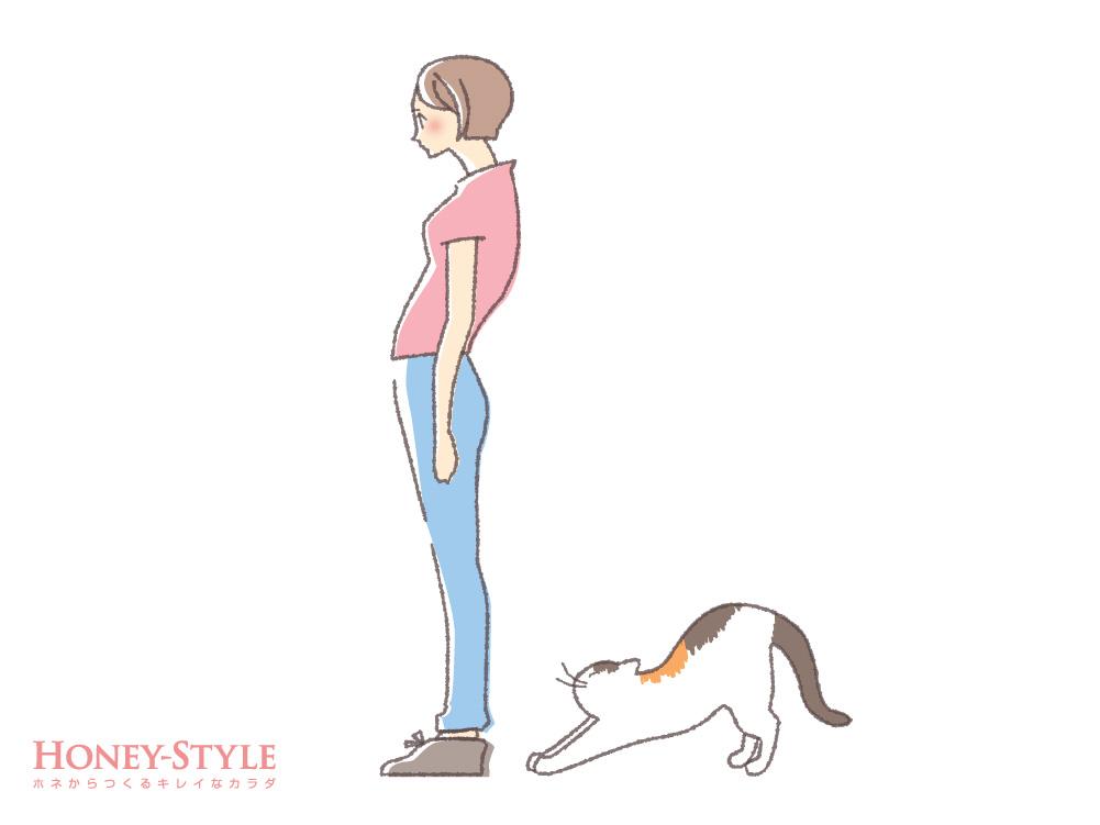 S字型猫背